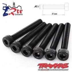 Tornillos  2.5x16mm hexagonal 6 Unidades TRA2618