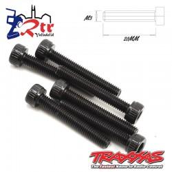 Tornillos Hexagonales 3x20 mm 6 Unidades Traxxas TRA2585