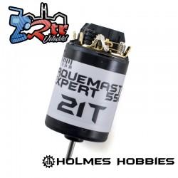 Motor Holmes Hobbies TorqueMaster Expert 550 21t